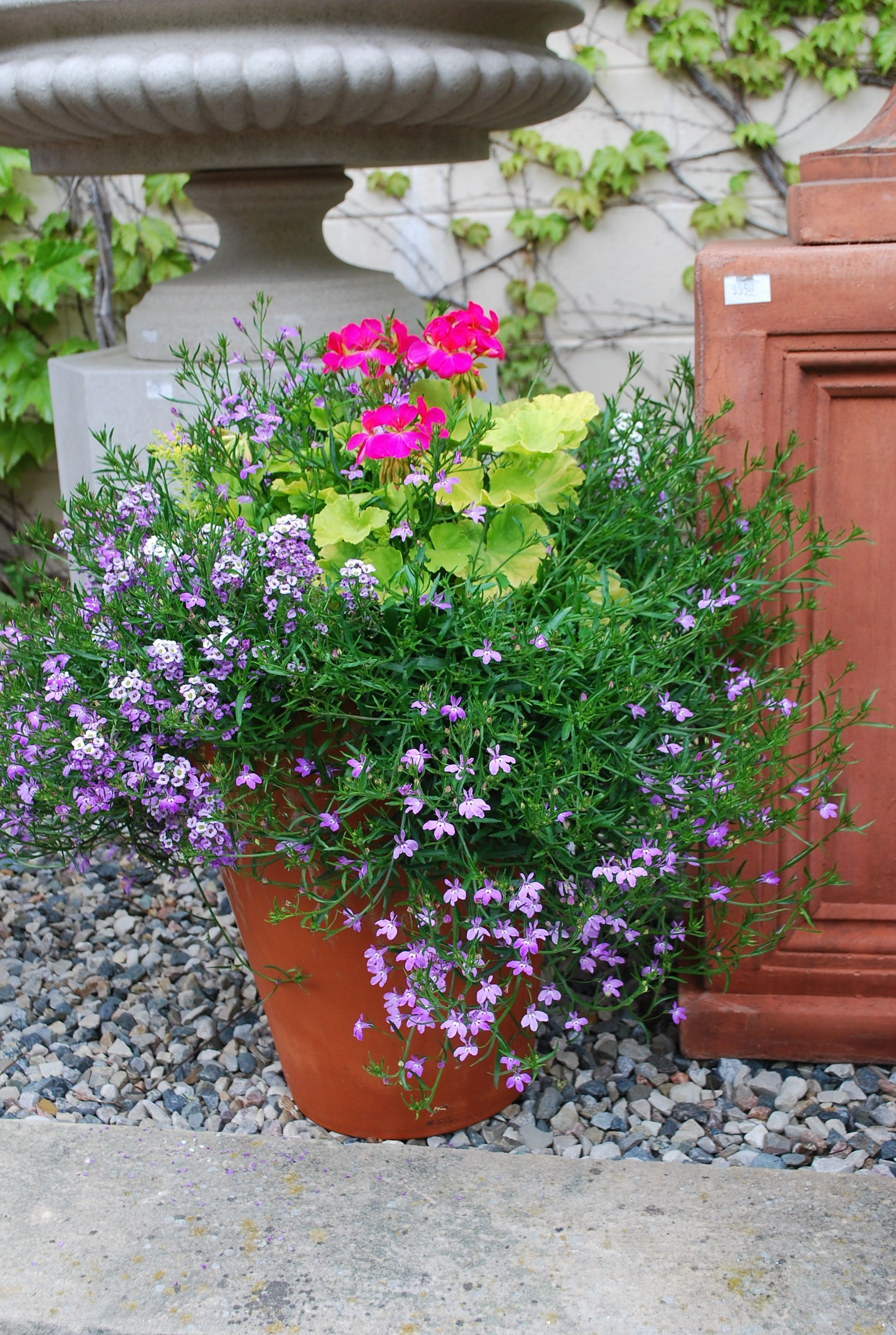 Spring Container Planting Dirt Simple Container Gardening Pink