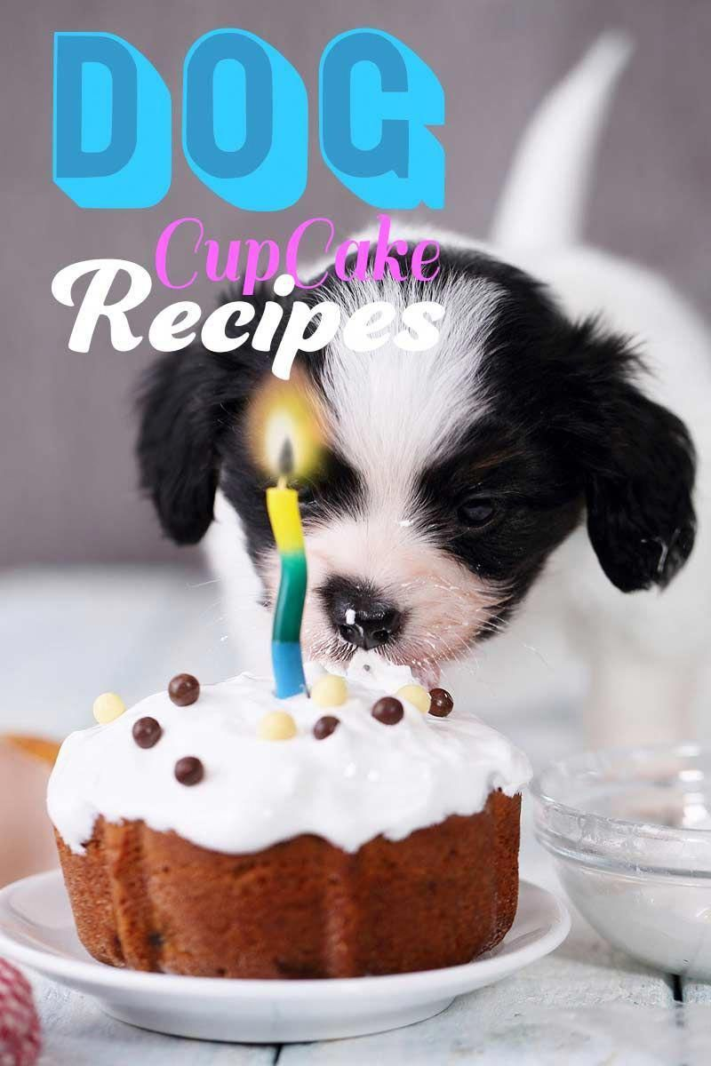 Dog cupcake recipes from super simple to uniquely