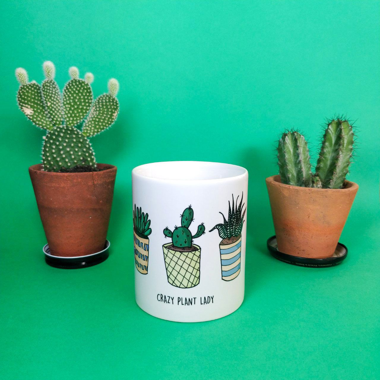 Crazy Plant Lady Mug Coffee Birthday Gift Present Gardening Mugs For Gardeners Lovers Plants By