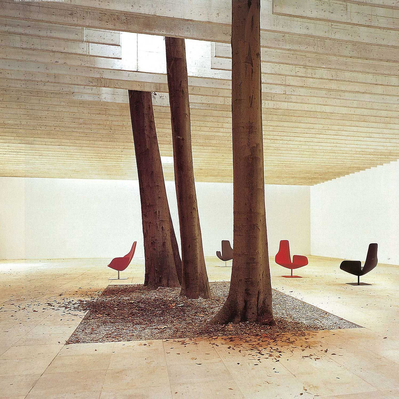 Trees In Interior Design