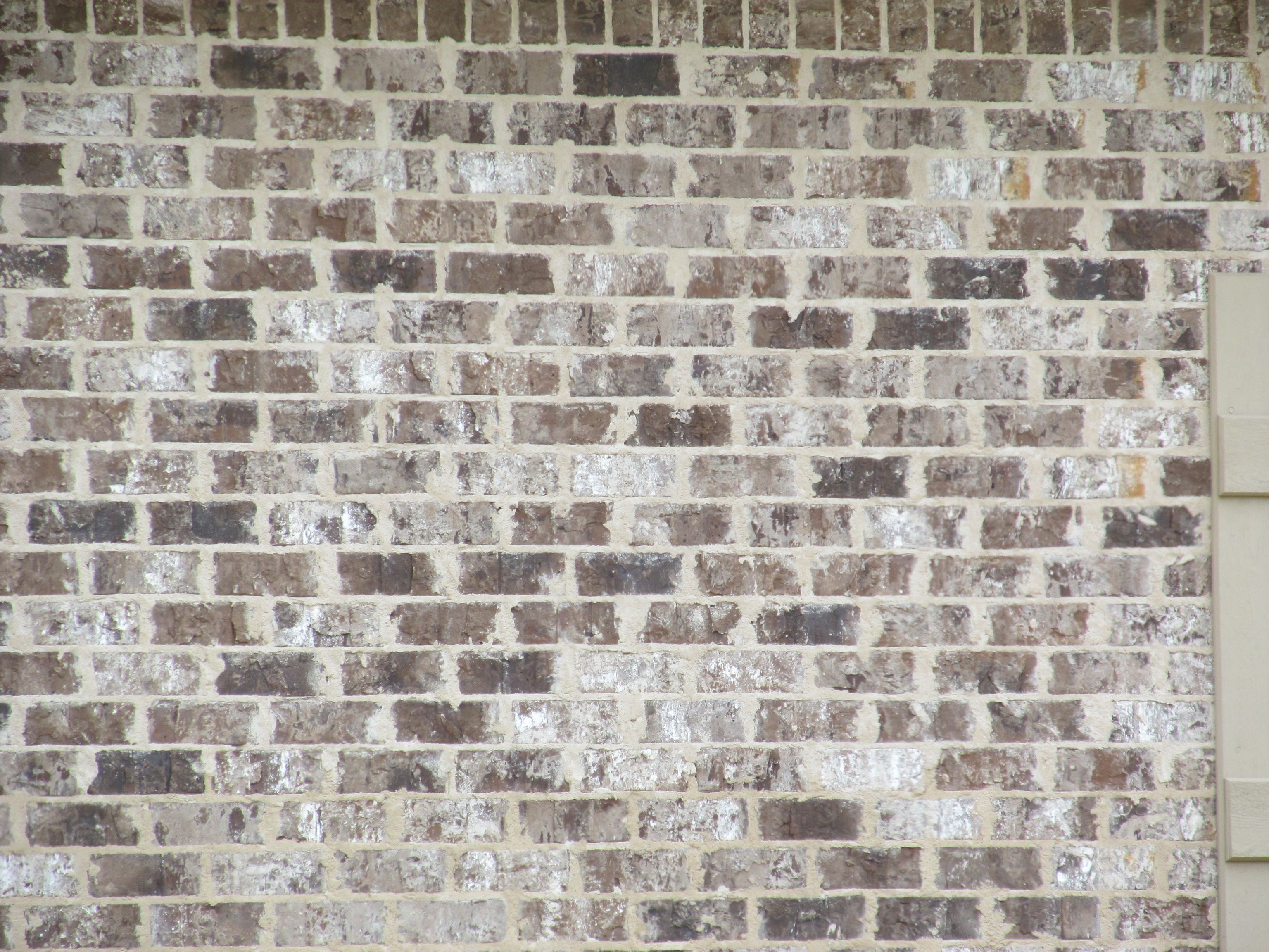 Ashton Ivory Buff Mortar Columbus Ms Brick Homes