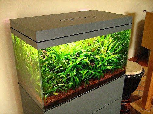 Fish tank hood v 2 aquarium hood diy aquarium and fish for Fish tank hoods