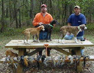 Hunters Showing Off Their Squirrel Dogs And The Bounty From Their