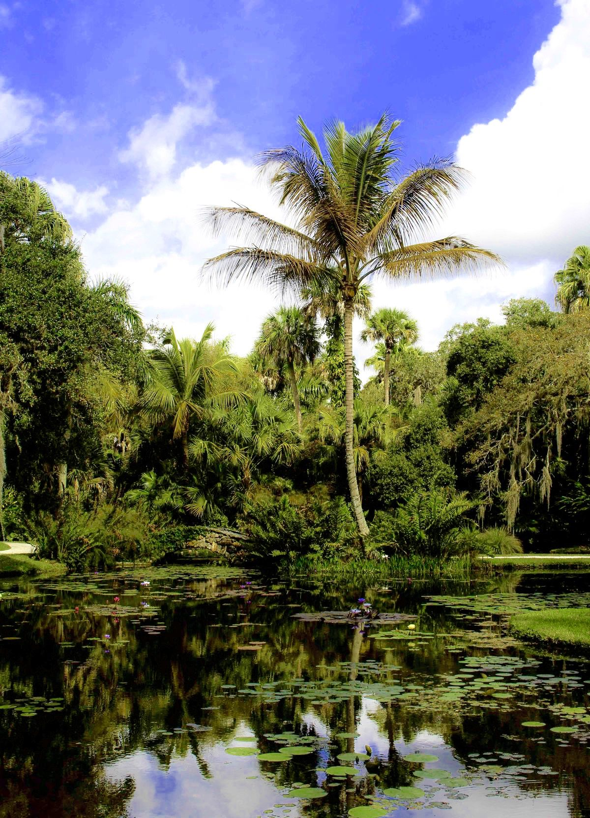 McKee Garden, Vero Beach, FL | Garden Delights | Pinterest | Vero ...