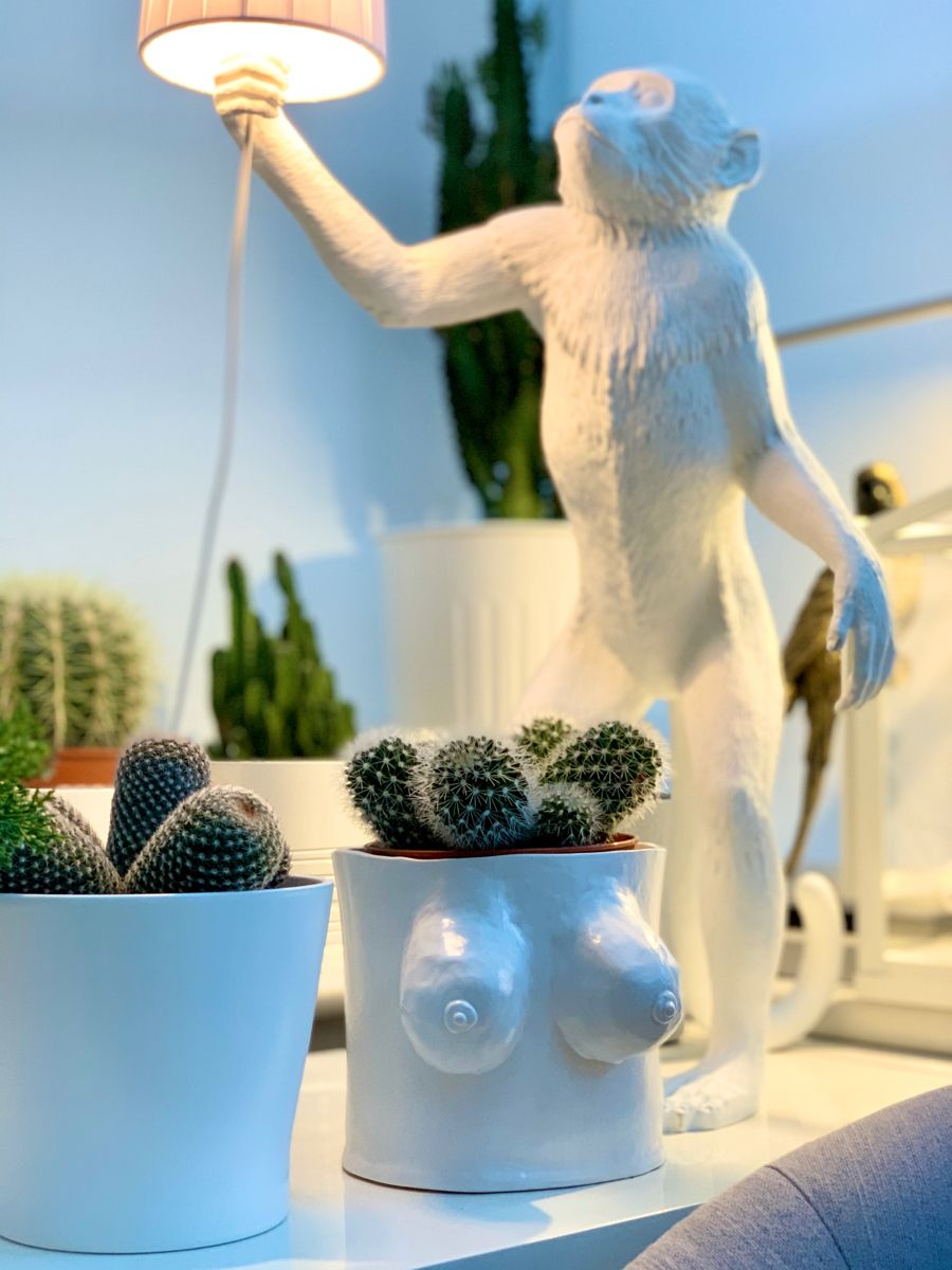 Photo of Quirky boob boobie plant pot