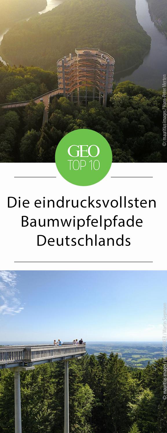 die zehn eindrucksvollsten baumwipfelpfade deutschlands travel bucket list pinterest. Black Bedroom Furniture Sets. Home Design Ideas