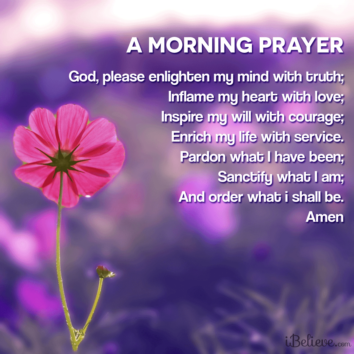 View Please Help Me See Your Truth Your Daily Verse Share Pin And Save Today S Encouraging Bible Sc Morning Prayers Good Morning Prayer Good Morning Quotes
