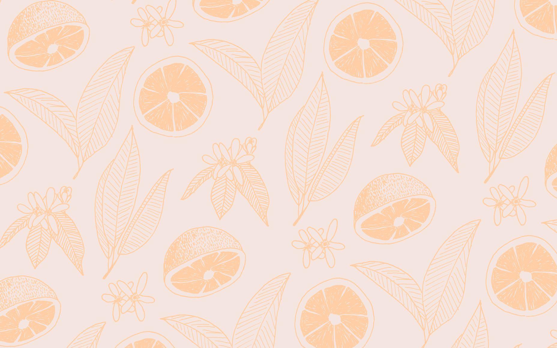 Margot Co 1 Jpg 1856 1161 Aesthetic Desktop Wallpaper Desktop Wallpaper Design Desktop Wallpaper Art