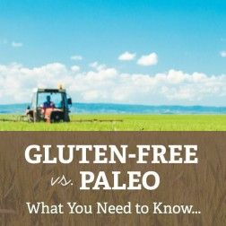 """""""Paleo"""" and """"Gluten-Free"""" are often tied together, and some people mistakenly assume that these two dietary lifestyles are synonymous. But, just because you are following a gluten free diet, doesn't necessarily mean that your diet is Paleo. It is important that you understand the differences..."""