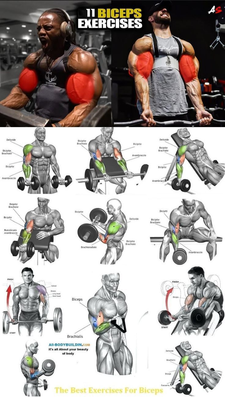Photo of Biceps exercise – #Biceps #exercise #weighttraining Biceps exercise – #Biceps #e…