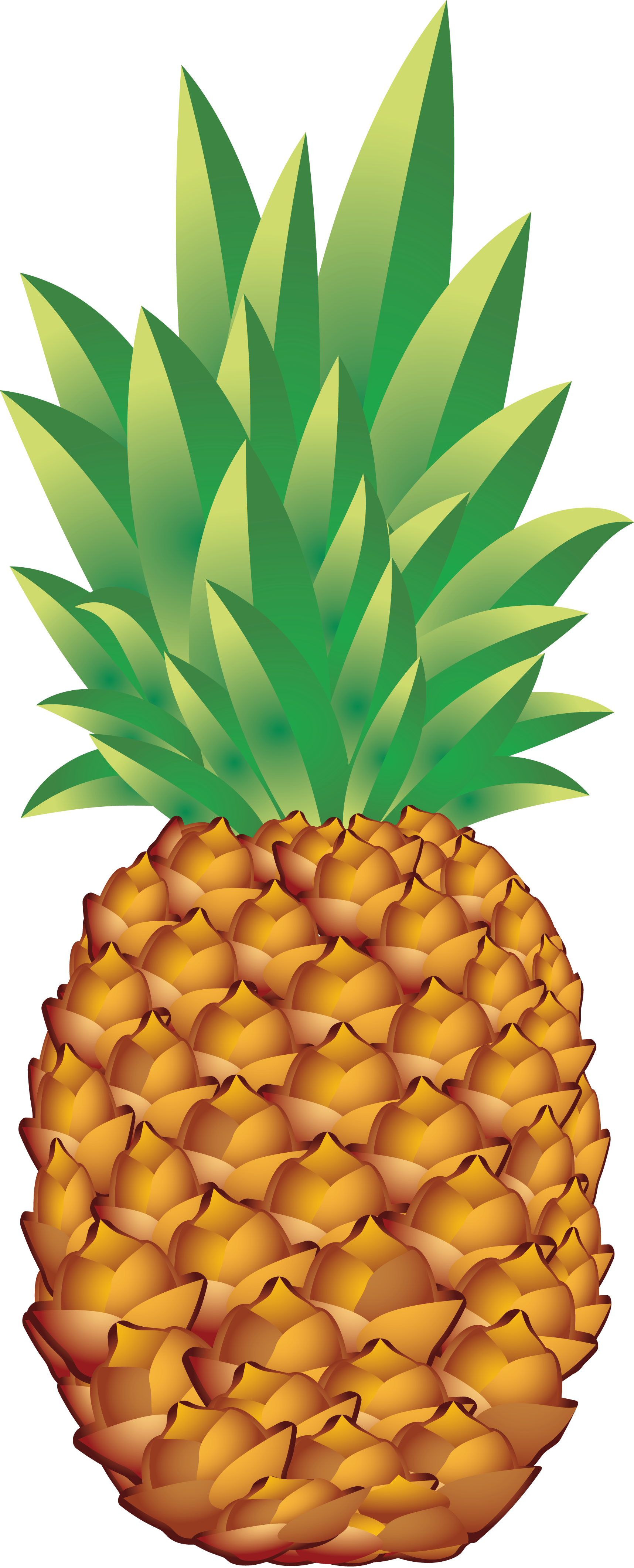 Pinapple Clipart PNG Image Pineapple, Pinapple