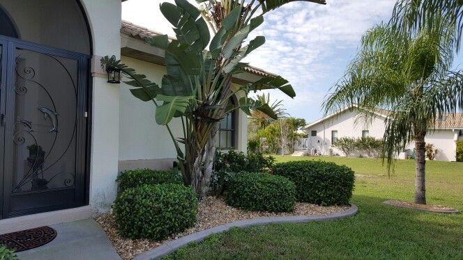 Front yard Bird of Paradise | Landscape, Front yard, Birds ... on Birds Backyard Landscapes id=85178