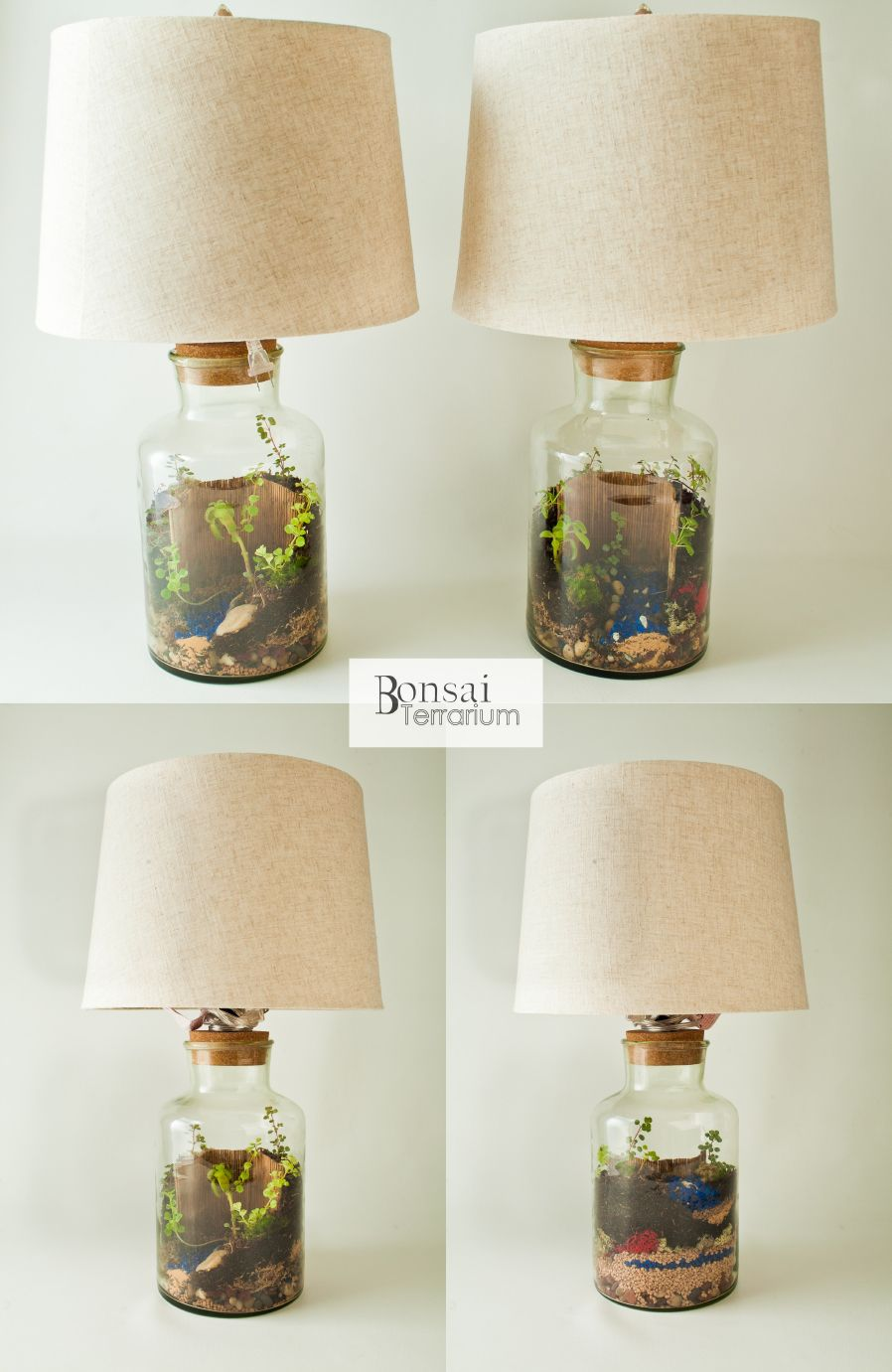 Terrarium Lamp | DIY - Do It Yourself | Pinterest | Fleurs