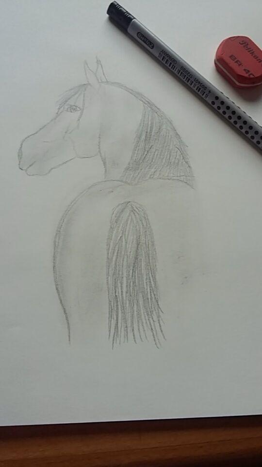 Pferd Zeichnen Bleistift Myart Pferde Zeichnen Zeichnen Und Pferde