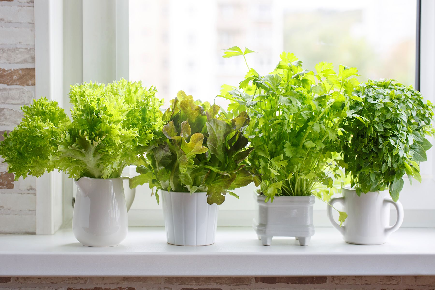 Slideshow Best Ways To Store Foods For Freshness Herbs 400 x 300