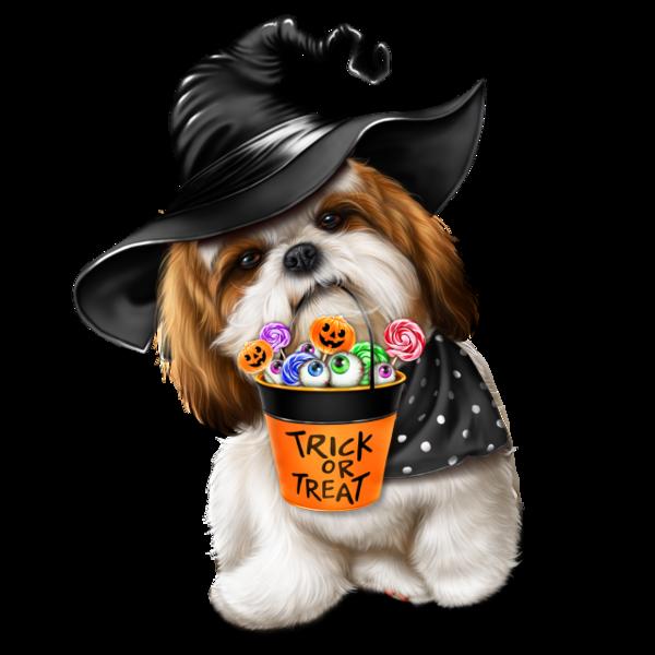 Character, Animals, Halloween