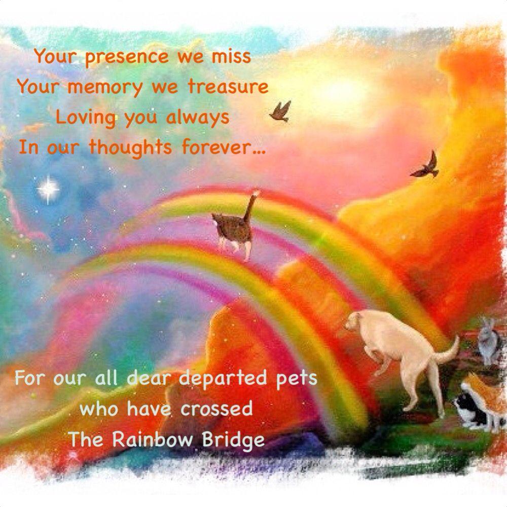 The Rainbow Bridge. DOG / PET LOSS & STORIES Pinterest
