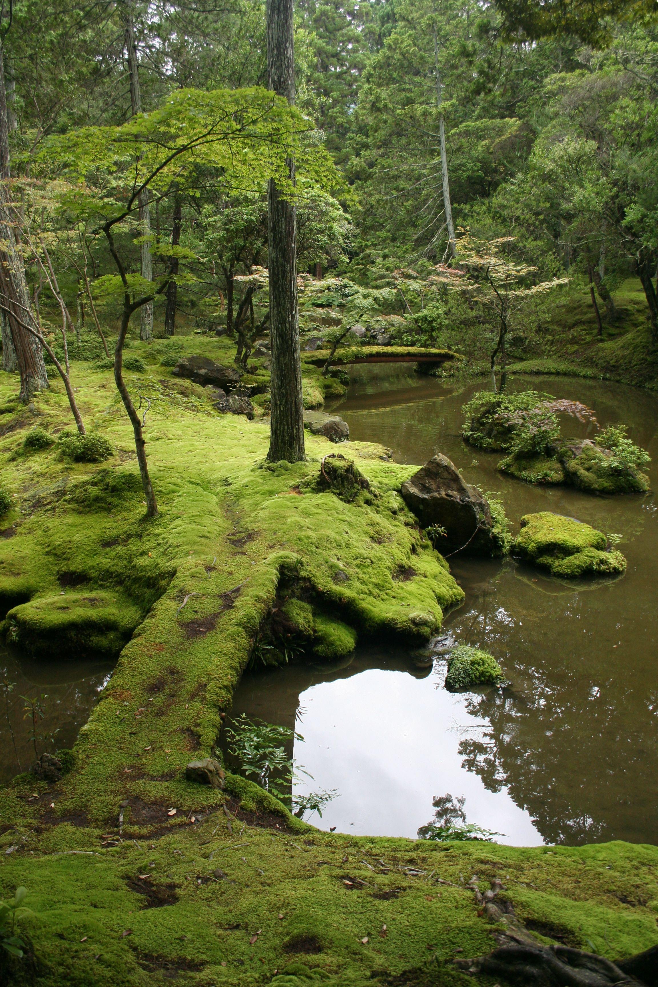 Saih ji buddhist temple in matsuo nishiky ward kyoto - Moosgarten kyoto ...