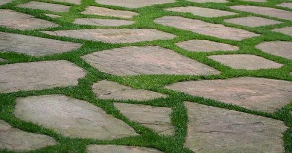 Flagstone Patio With Grass For Flagstone With Grass Between Stones Google Search Flagstone