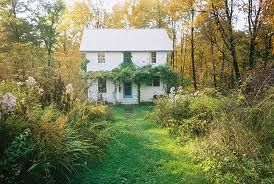 small cottage in the woods