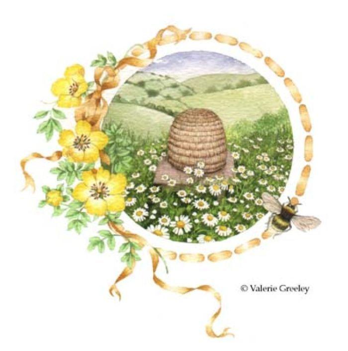 Valerie Greeley - D31 Hive.jpg