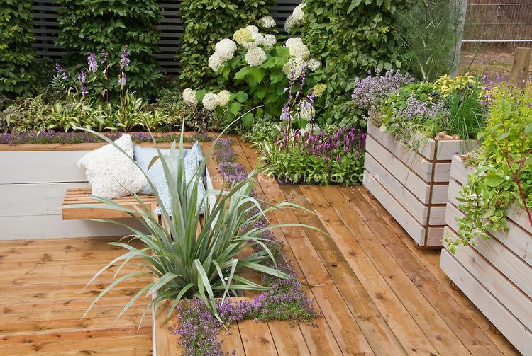 Sunken Deck Landscaping And Garden Plant Flower Stock
