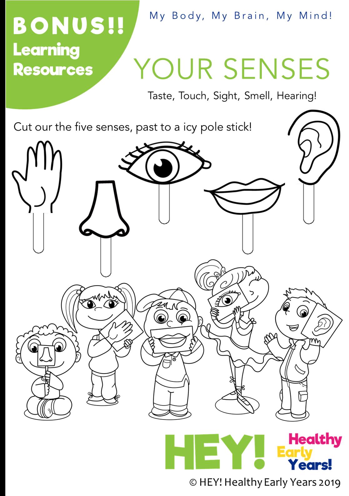 Free Human Body Five Session Preschool Activity Worksheet Preschool Activity Free Preschool Activities Senses Preschool [ 1588 x 1117 Pixel ]