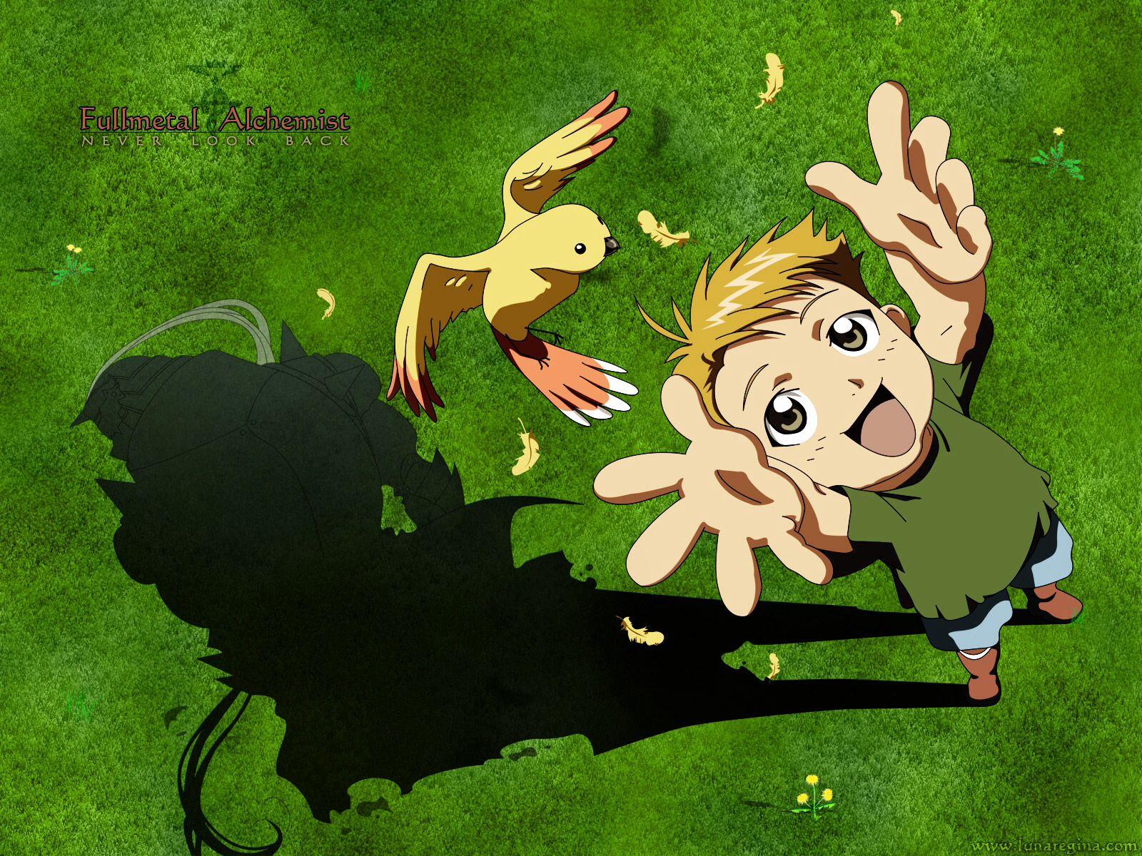 Fullmetal Alchemist Wallpaper Little Alphonse