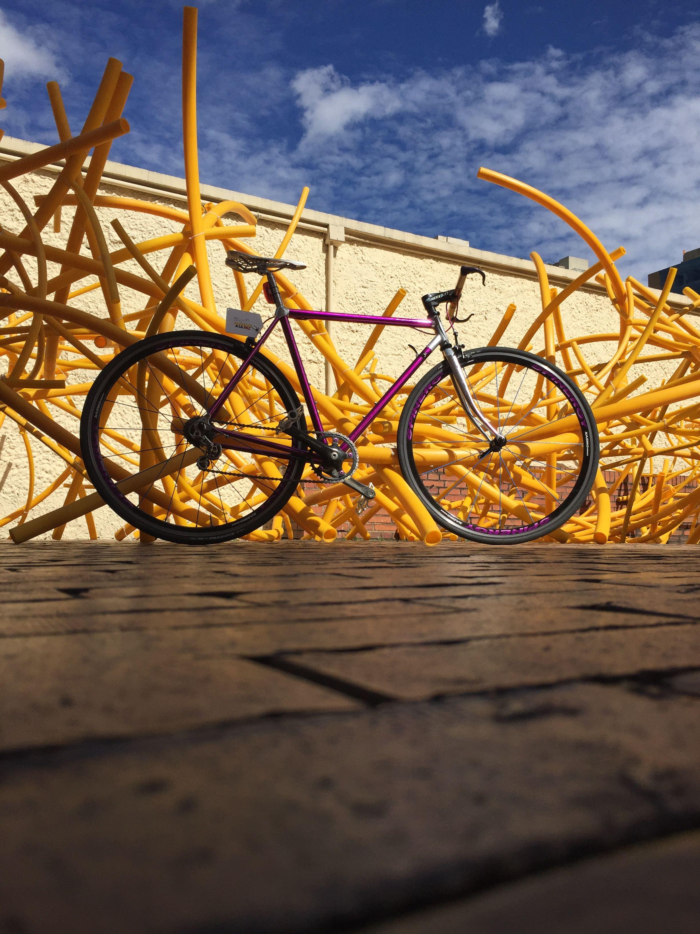 Vitus bike 797 purple Fixie