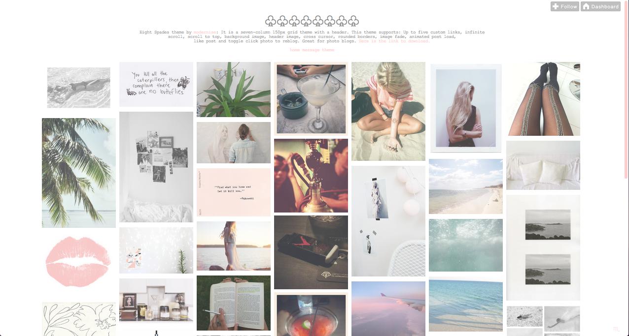 Tumblr Themes | ruba | Polaroid film, Polaroid, Tumblr