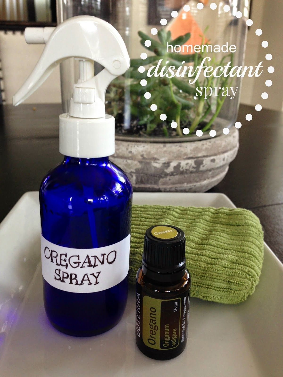 Homemade Disinfectant Spray using Oregano Essential Oil