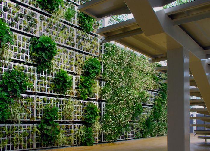 detalle muro jardin vegetal - Buscar con Google   Jardin Vertical ...