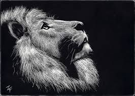 Image Result For Scratch Art Animals