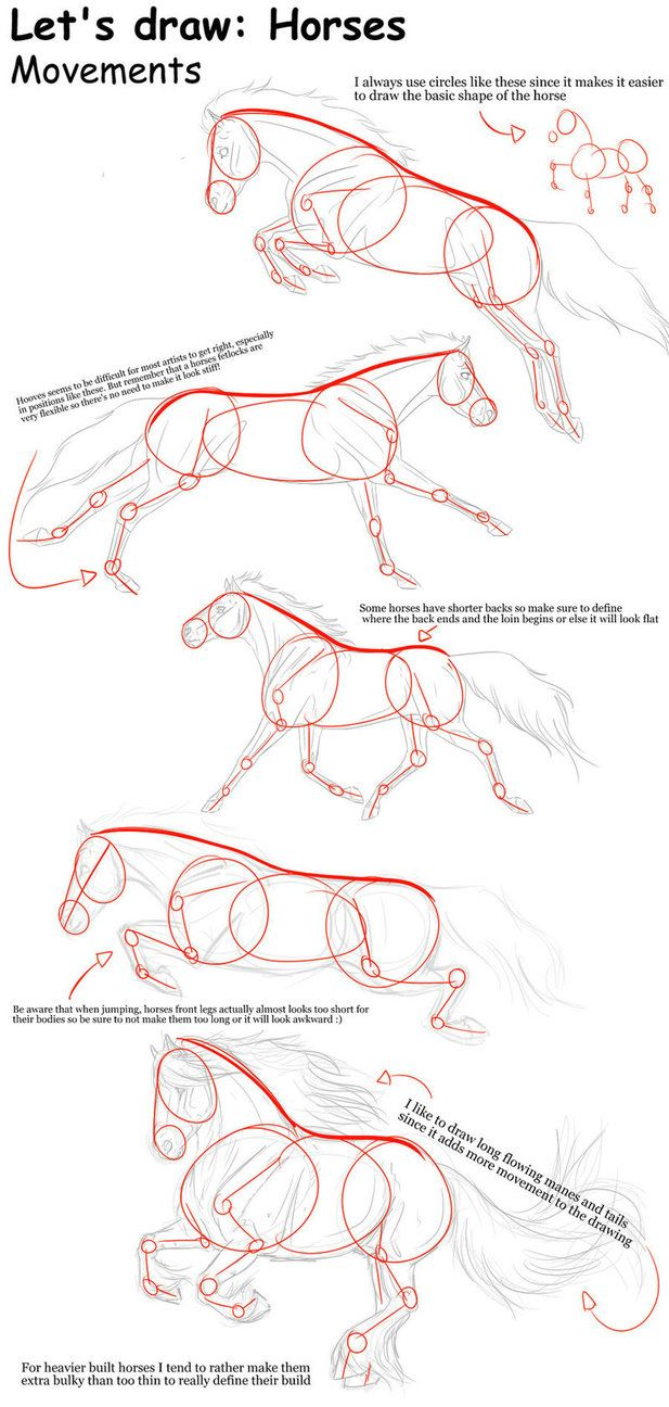 Let\'s Draw Horses | zeichnungen | Pinterest | Art designs, Tutorials ...