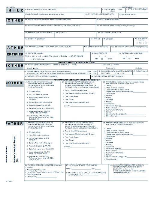 Cute Looking Birth Certificate Template , Birth certificate - birth certificate template