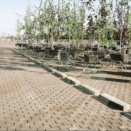 NL created a forest of 100 trees planted in shopping trolleys at the Urban Play event in Amsterdam, Netherlands