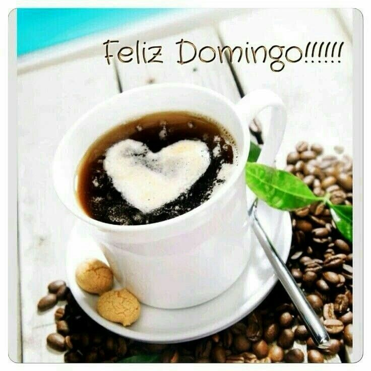 Bom dia a todos e tenham um ótimo domingo! ✌☕