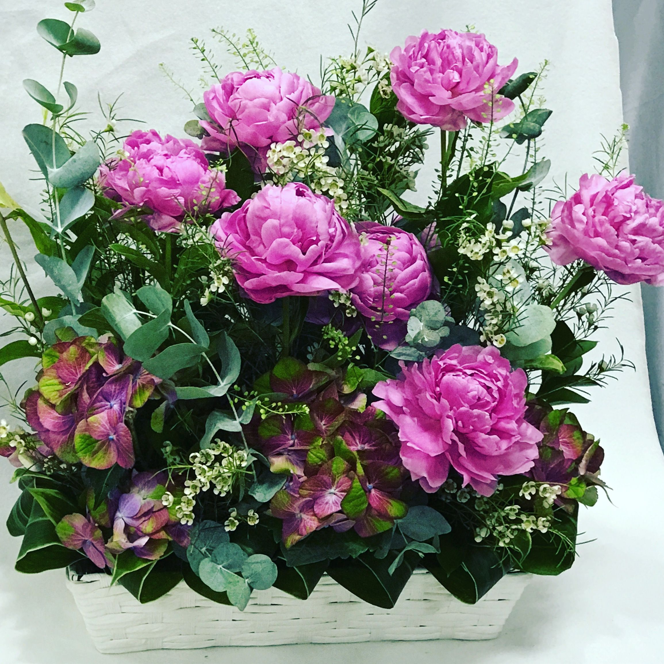 Peony is here. Flower delivery Singapore Flower delivery