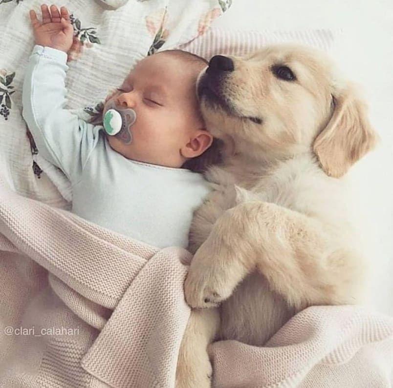 Épinglé sur Bébés adorables