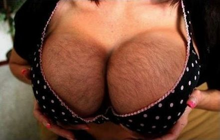 Hairy breast pic