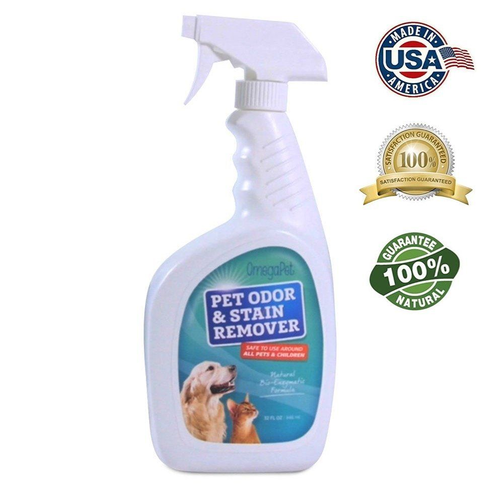 Natural Deodorizers For Dog Urine