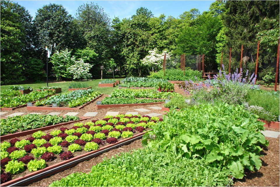 43f0b35ec152af8fca381ed988eef45e - Shrek The Halls Auburn Botanic Gardens