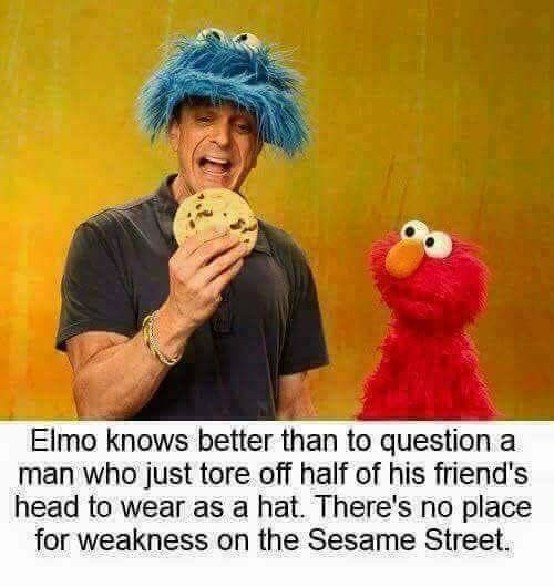 Pin By Just A Guyen On Anything Sesame Street Memes Funny Pictures Elmo Memes