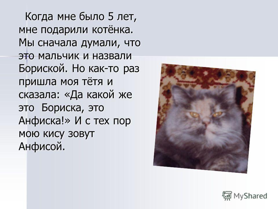 Рассказ о любимом животном на английском языке 3 класс