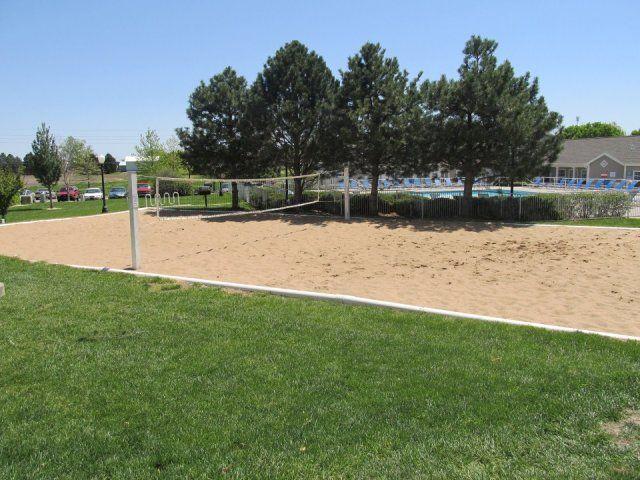 Sand Volleyball The Perfect Summer Sport Jacksonville Florida Kansas State University Kansas State