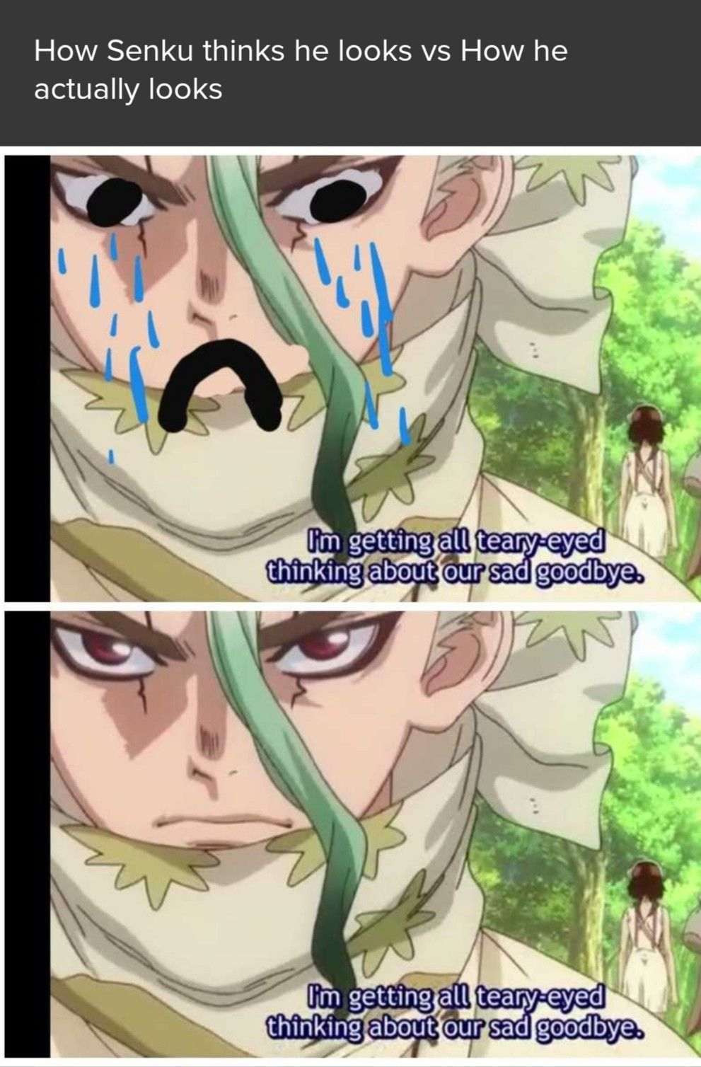 Dr stone meme from tv time in 2020 Stone, Slayer anime