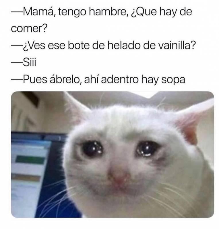 Memesespanol Chistes Humor Memes Risas Videos Argentina Memesespana Colombia Rock Memes Love Vira Funny Memes Funny Relatable Memes Funny Pictures