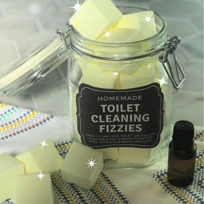 toilet cleaning fizzies - one essential community   toilet