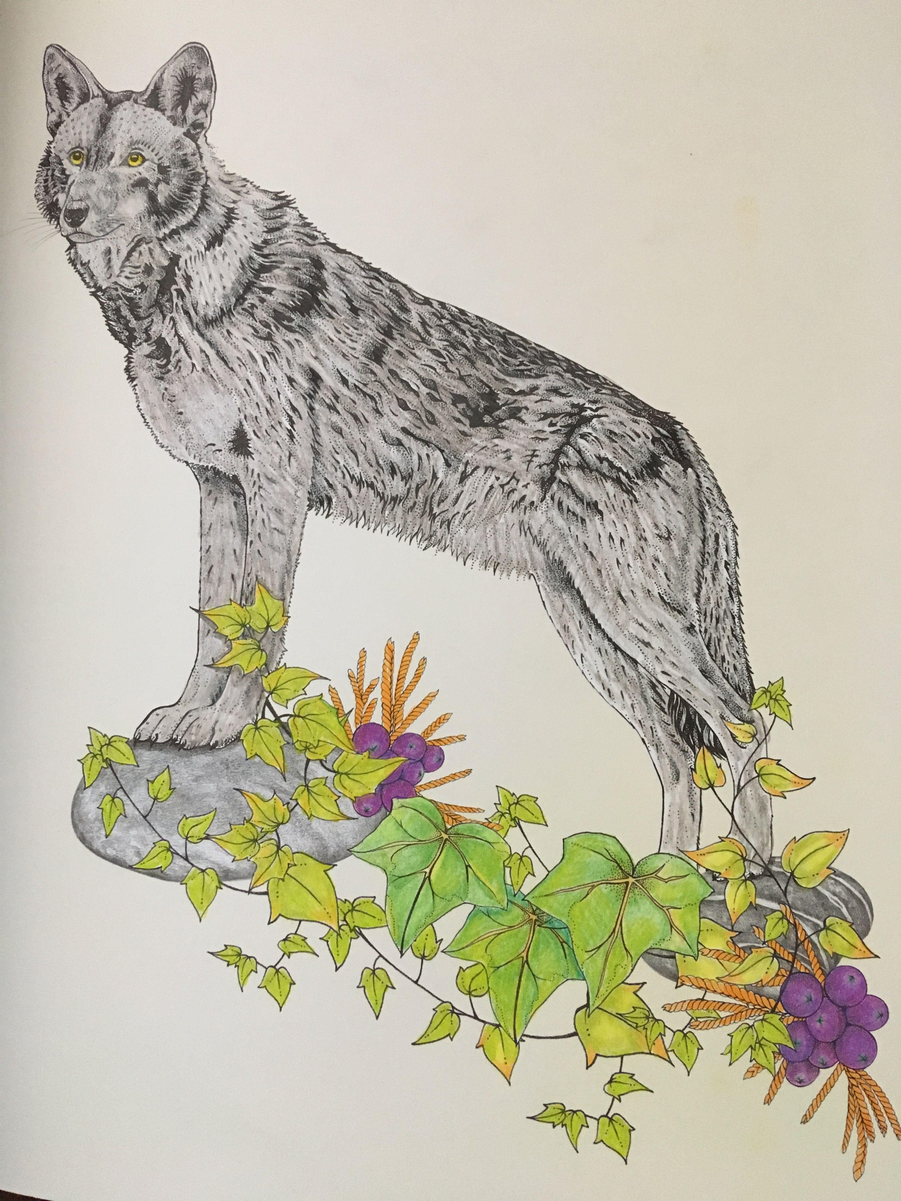 Daisy Fletcher Intothewild Wild Daisy Art