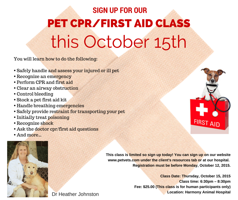 Pin By Harmony Animal Hospital On EVENTS